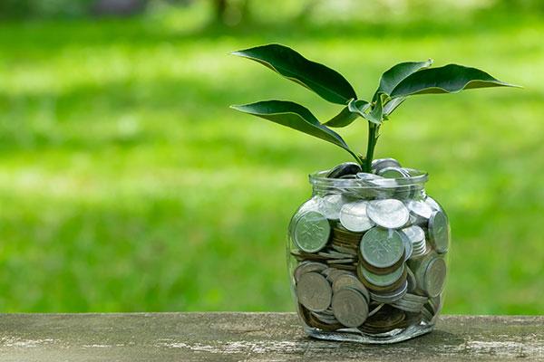 AMA Insurance | Self Manage Super Annuation